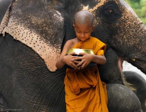 thailand-baby-buddha