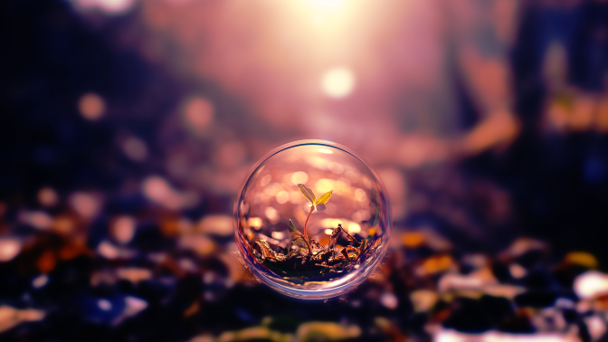 small-plant-in-a-bubble-digital-art-hd-wallpaper-1920x1080-2139